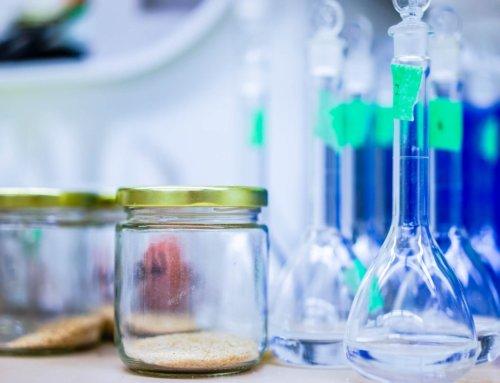 Кормовой белок сои: плохой или хороший? Биотрансформации.