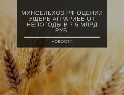 Минсельхоз РФ оценил ущерб аграриев от непогоды в 7,5 млрд руб.